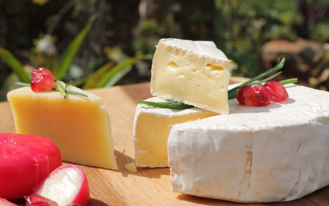 Parlons de l'élaboration du camembert